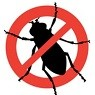 bed bug extermination with pest control solutions