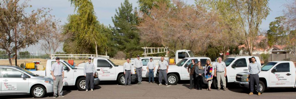 Pest Control Solutions Staff and Fleet