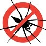 spider control with pest control solutions